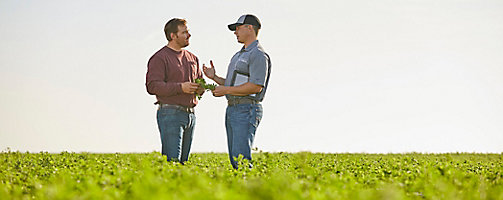 Rep and farmer in alfalfa field