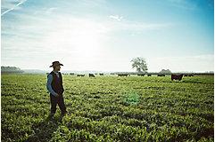 Rancher walking in field