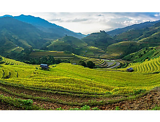 IMG_rice-paddy-terraces-1_beauty_1_64-1