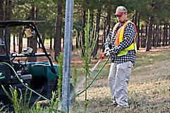 man spraying brush by pole with tank sprayer