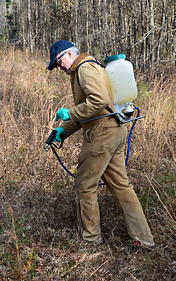 Worker spraying with backpack