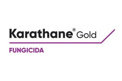 Logo de Karathane Gold