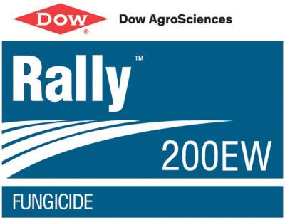 Rally 200 EW logo
