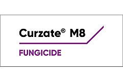 Curzate Logo