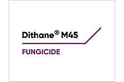 Dithane Logo