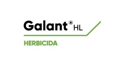 Logo de Galant HL