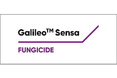 Galaileosensa logo