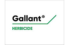 Gallanr Logo