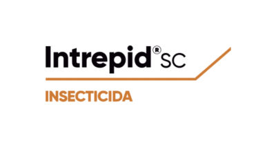 Logo de Intrepid