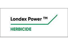 Londax logo