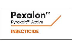 Pexalon Logo