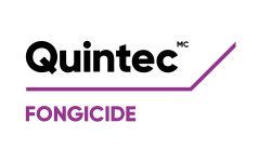 Quintec Fongicide Logo