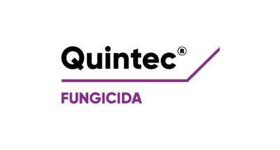 Logo de Quintec
