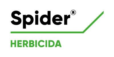 Logo de Spider