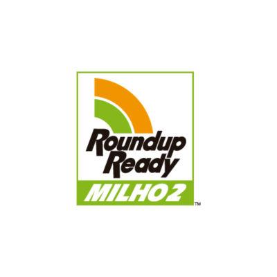 Logo do RR Milho 2