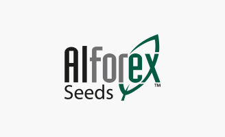 Image of Alforex Seeds logo