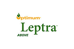 Optimum® Leptra® Hybrids