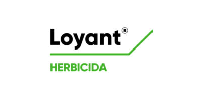 Loyant Logo