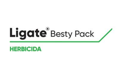 Logo de Ligate Besty STS