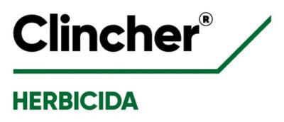 LogoClincher