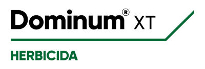 LogoDominumXT