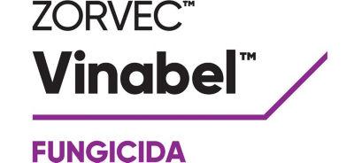 Logo Zorvec Vinabel