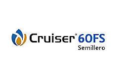 Logo Crusier
