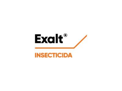 Logo de Exalt