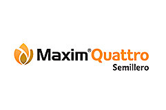 Logo Maxim Quattro