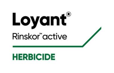 Loyant Herbicide