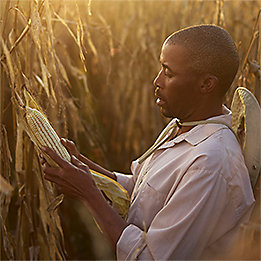 Sustainability goals to benefit farmers
