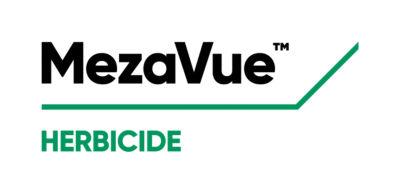 MezaVue logo