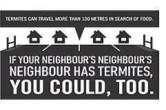 Neighbors_Neighbor