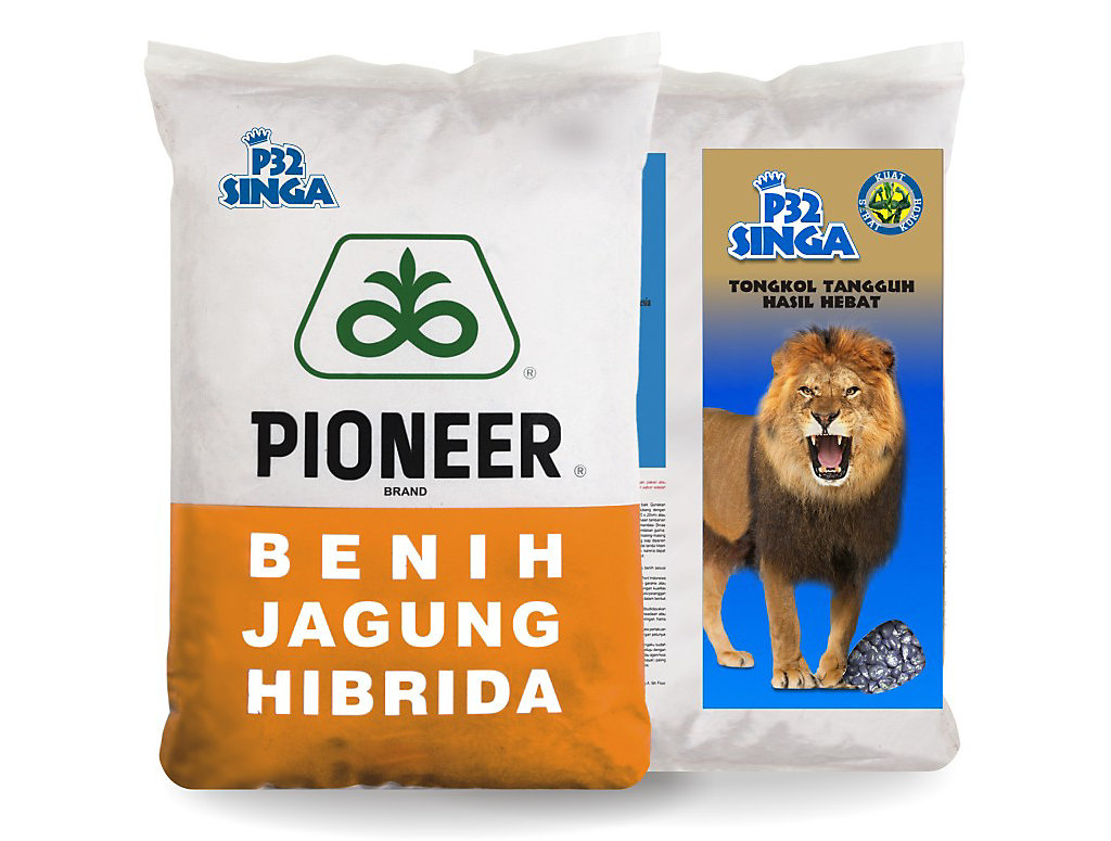 Pioneer_P32_Singa