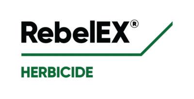 RebelEX
