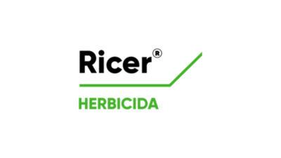 Ricer logo
