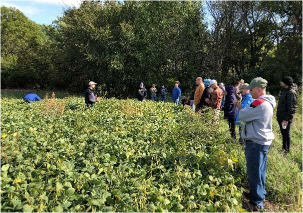 S.A.V.E. participants gathering with the Pioneer team in October 2018 to evaluate their soybean crop and work on 2019 crop management plans.