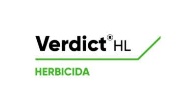 Verdict HL Logo