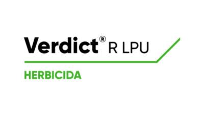 Verdict R LPU Logo