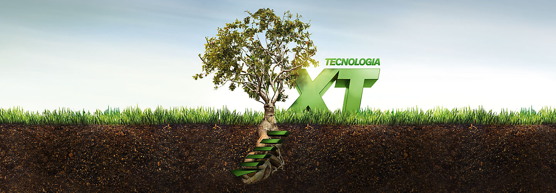 XT desktop image