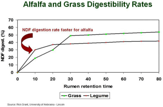 Chart: Alfalfa and Grass Digestibility Rates