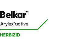 Belkar Logo