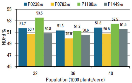 Chart: NDFd (%) response to plant population.