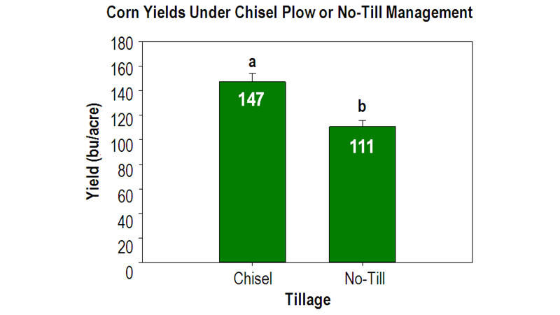 Chart: Corn Yields Under Chisel Plow or No-Till Management