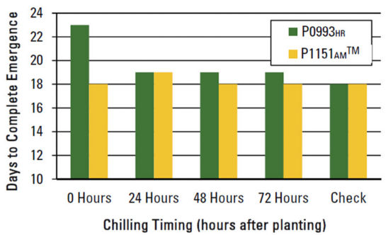 Chart: Effect of chilling timing on days to complete emergence.