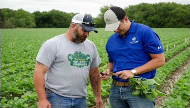 Pioneer Territory Manager Clint Pickard sharing crop management information with a S.A.V.E. participant.