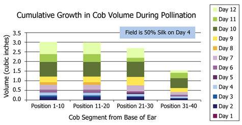 Cumulative growth in cob volume during pollination.