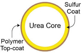 Sulfur + Polymer-Coated Urea