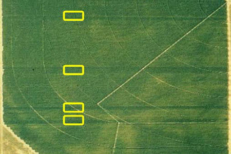 Aerial photograph of reference strips.