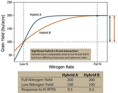 Response of two hypothetical corn hybrids which have similar yields at low N and full N but have differing responses and optimum N rates.